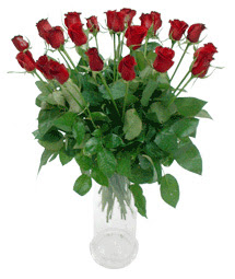 Kütahya 14 şubat sevgililer günü çiçek  11 adet kimizi gülün ihtisami cam yada mika vazo modeli