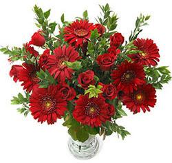 5 adet kirmizi gül 5 adet gerbera aranjmani  Kütahya çiçek servisi , çiçekçi adresleri
