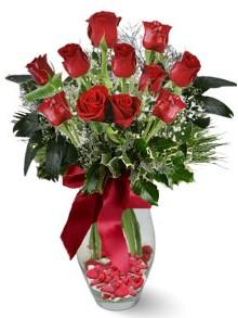 9 adet gül  Kütahya güvenli kaliteli hızlı çiçek  kirmizi gül