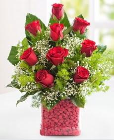 Cam içerisinde 9 adet kırmızı gül  Kütahya güvenli kaliteli hızlı çiçek