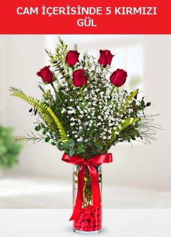 Cam içerisinde 5 adet kırmızı gül  Kütahya kaliteli taze ve ucuz çiçekler