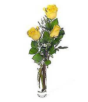 Kütahya online çiçekçi , çiçek siparişi  3 adet kalite cam yada mika vazo gül