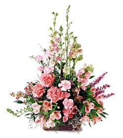 Kütahya çiçek online çiçek siparişi  mevsim çiçeklerinden özel