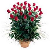 Kütahya çiçek gönderme  10 adet kirmizi gül cam yada mika vazo