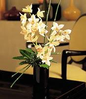 Kütahya yurtiçi ve yurtdışı çiçek siparişi  cam yada mika vazo içerisinde dal orkide
