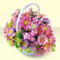 Kütahya çiçekçiler  bir sepet dolusu kir çiçegi  Kütahya cicek , cicekci