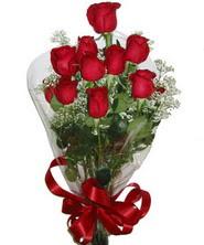 9 adet kaliteli kirmizi gül   Kütahya internetten çiçek siparişi