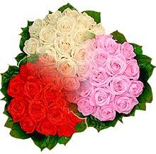 3 renkte gül seven sever   Kütahya hediye sevgilime hediye çiçek