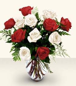 Kütahya çiçek gönderme  6 adet kirmizi 6 adet beyaz gül cam içerisinde