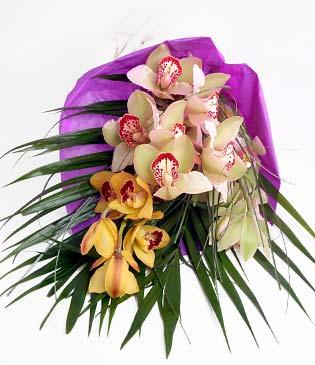 Kütahya çiçek yolla  1 adet dal orkide buket halinde sunulmakta