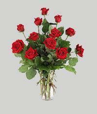 Kütahya çiçek yolla  11 adet kirmizi gül vazo halinde