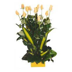 12 adet beyaz gül aranjmani  Kütahya çiçek siparişi sitesi