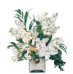 Kütahya online çiçekçi , çiçek siparişi  sadece beyazlardan olusmus mevsim cam yada mika tanzim