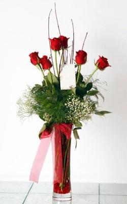 Kütahya çiçek yolla  6 adet kirmizi gül ve cam yada mika vazo