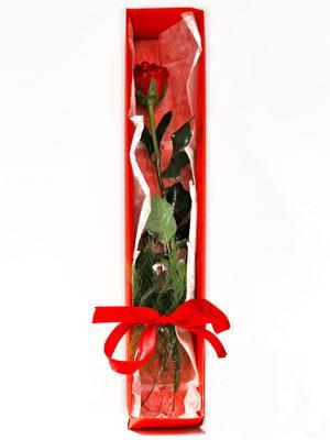 Kütahya çiçekçiler  1 adet kutuda gül
