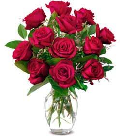 Kütahya İnternetten çiçek siparişi  1 düzine kirmizi gül sevenlere özel vazo gülleri