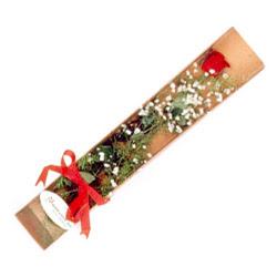 Kütahya hediye sevgilime hediye çiçek  Kutuda tek 1 adet kirmizi gül çiçegi