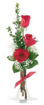 Kütahya çiçek yolla  mika yada cam vazoda 3 adet kirmizi gül