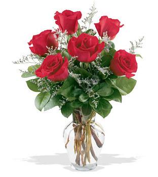 Kütahya çiçek yolla  cam yada mika vazoda 6 adet kirmizi gül