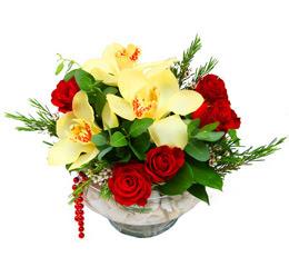 Kütahya uluslararası çiçek gönderme  1 adet orkide 5 adet gül cam yada mikada