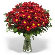 Kütahya cicekciler , cicek siparisi  Kir çiçekleri cam yada mika vazo içinde