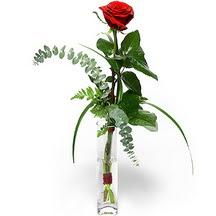 Kütahya çiçekçi telefonları  Sana deger veriyorum bir adet gül cam yada mika vazoda