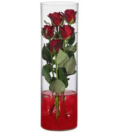 cam içerisinde 7 adet kirmizi gül  Kütahya yurtiçi ve yurtdışı çiçek siparişi