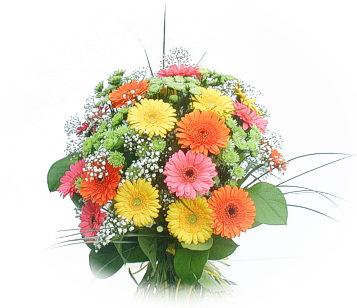 13 adet gerbera çiçegi buketi  Kütahya İnternetten çiçek siparişi