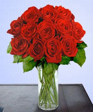 Anneme 12 adet cam içerisinde kirmizi gül  Kütahya kaliteli taze ve ucuz çiçekler