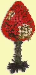 Kütahya uluslararası çiçek gönderme  dügün açilis çiçekleri  Kütahya ucuz çiçek gönder