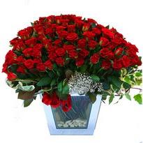 Kütahya yurtiçi ve yurtdışı çiçek siparişi   101 adet kirmizi gül aranjmani