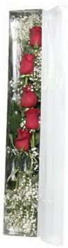 Kütahya kaliteli taze ve ucuz çiçekler   5 adet gülden kutu güller
