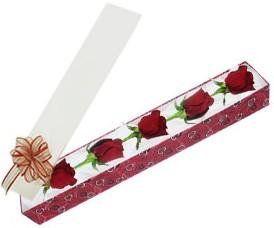 Kütahya güvenli kaliteli hızlı çiçek  kutu içerisinde 5 adet kirmizi gül