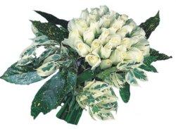 Kütahya online çiçekçi , çiçek siparişi  9 Beyaz gül Özel kisiler için