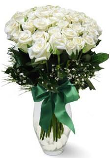 19 adet essiz kalitede beyaz gül  Kütahya yurtiçi ve yurtdışı çiçek siparişi