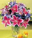 Kütahya çiçekçi mağazası  Sevgi bahçesi Özel  bir tercih