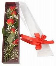 kutu içinde 5 adet kirmizi gül  Kütahya online çiçekçi , çiçek siparişi