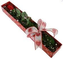 Tek kirmizi gül kutu içerisinde  Kütahya internetten çiçek satışı