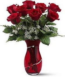 Vazo içinde 8 adet kirmizilar içinde güller  Kütahya online çiçekçi , çiçek siparişi