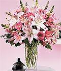 Kütahya çiçek siparişi vermek  Kazablanka biçme vazoda