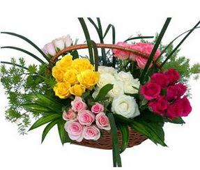 Kütahya çiçek online çiçek siparişi  35 adet rengarenk güllerden sepet tanzimi