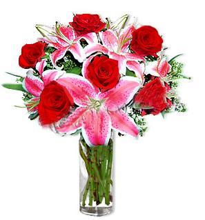 Kütahya cicekciler , cicek siparisi  1 dal cazablanca ve 6 kırmızı gül çiçeği
