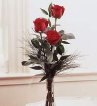 Kütahya güvenli kaliteli hızlı çiçek  Vazoda 3 adet güzel gül