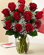 Sevgilime hediye 9 adet 1.ci kalite gül  Kütahya çiçek satışı