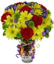 En güzel hediye karışık mevsim çiçeği  Kütahya çiçek servisi , çiçekçi adresleri