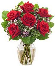 Kız arkadaşıma hediye 6 kırmızı gül  Kütahya online çiçekçi , çiçek siparişi