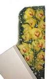 Kütahya uluslararası çiçek gönderme  Kutu içerisine dal cymbidium orkide