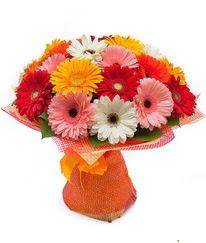 Renkli gerbera buketi  Kütahya çiçek satışı