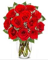 12 adet vazoda kıpkırmızı gül  Kütahya çiçek gönderme sitemiz güvenlidir