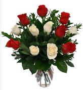 Vazo içerisinde 6 kırmızı 6 beyaz gül  Kütahya çiçek servisi , çiçekçi adresleri